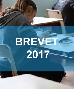 Brevet 2017 Questions Dictee Redaction Les Sujets De