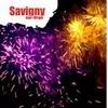 Feu d'artifice et bal des pompiers à Savigny