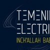 affiche TEMENIK ELECTRIC