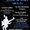 affiche SWING SUMMER NIGHT Rock Boogie West Coast Swing
